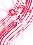 Red Flower spring Floral design graphic. Red flower design graphic illustration Stock Photos