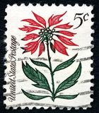 Red Flower USA Postage Stamp Royalty Free Stock Images