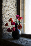 Red flower in a vase. On the window Royalty Free Stock Image