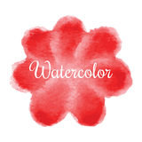 Red flower watercolor hand drawn background stock illustration