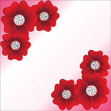 Red flower on white background. Vector illustration stock illustration