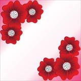Red flower on white background. Vector illustration Stock Images