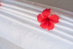 Red flower in white towels concept Stock Image