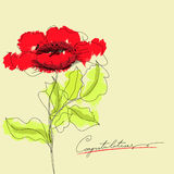 Red flowers. With inscription congratulation Royalty Free Stock Photos