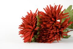 Red Flowers. A bundle of red flowers Stock Photo