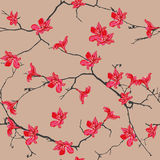 Red Flowers Almond Seamless Vector Pattern Royalty Free Stock Photo