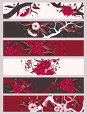 Red  flowers  banner set Stock Image