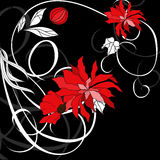 Red flowers on black background Royalty Free Stock Image