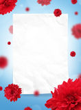 Red flowers with frame Royalty Free Stock Photos