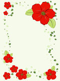 Red flowers frame Royalty Free Stock Images
