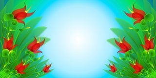 Red Flowers Garden Background Royalty Free Stock Photo