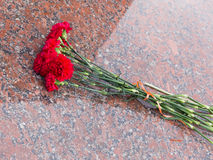 Red flowers on a granite stone Royalty Free Stock Images