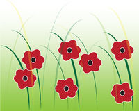 Red flowers graphic. Red flowers and grass graphic against a green background Stock Image