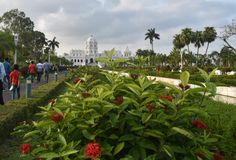 red flowers and green leaves in front of white palace Stock Image
