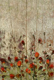 Red flowers on grunge wood background Stock Photography