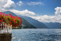 Red flowers by Lake Como Stock Photos