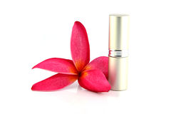 The Red flowers and Lipstick casing Silver. Stock Photography