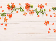 Free Red Flowers On Wooden Background Stock Image - 84071751