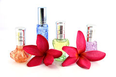 The Red flowers and Orange,Blue,Green,Violet Perfume bottles. Stock Photo