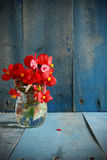 Red flowers over blue wood-vignetting Royalty Free Stock Images