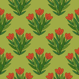 Red flowers pattern. Red flowers bunches seamless pattern Royalty Free Stock Photo