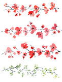 Red flowers pattern. Watercolor and ink illustration of red flowers and leaves Stock Photo