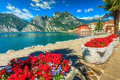 Red flowers and promenade,Lake Garda,Northern Italy,Europe stock photos