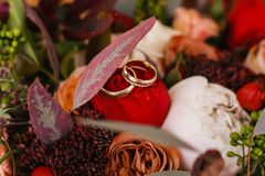 Red flowers - rings - wedding time - beauty stock image