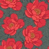 Red flowers seamless background Royalty Free Stock Photos