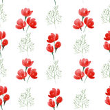 Red flowers seamless pattern. Stock Photography