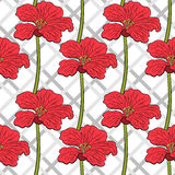 Red Flowers Seamless Pattern 2 Royalty Free Stock Photos