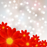 Red flowers on shiny background Royalty Free Stock Photos