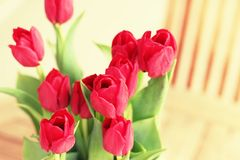 Red flowers on a terrace table. A still-life of some flowers as a home decoration royalty free stock images