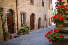 Red flowers in Tuscany, Italy. Beautiful red flowers on steps in Tuscany, Italy royalty free stock photos