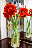 Red flowers in a vase reflected in the mirror, Stock Image