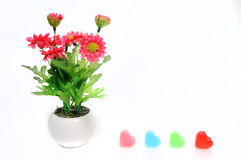 Red flowers in white flower pot with heart, artificially Stock Photo