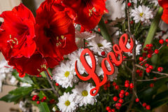 Red flowers with wooden sign Love Stock Photography