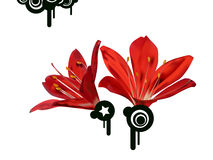 Red flowerses. On white background executed in technology Gradient Mash Royalty Free Stock Image