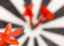 Red flying dart to dartboard Royalty Free Stock Photos