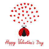Red flying lady bug insect with hearts. Cute cartoon character. Happy Valentines Day. Love card. White background. Flat design. Stock Photos