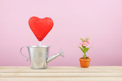 The red foiled chocolate heart stick with small silver watering can and mini fake flower in brown plant pot on wooden tray Stock Images