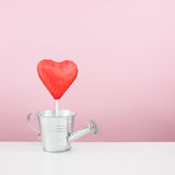 The red foiled chocolate heart stick with small watering can Royalty Free Stock Photography