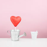 The red foiled chocolate heart stick with small watering can Royalty Free Stock Photos