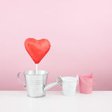 The red foiled chocolate heart stick with small watering can Royalty Free Stock Images
