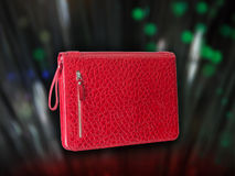 Red folder. Red woman folder(hand bag) for documents and business Stock Photography