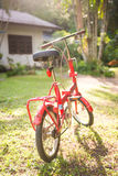 Red folding bicycles in park Royalty Free Stock Images