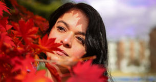 Red foliage, woman and shadow Royalty Free Stock Photo