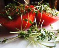 Red Food and Leaf Vegetable Royalty Free Stock Photos