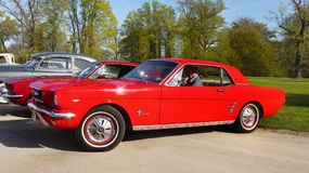 Red Ford Mustang, Vintage Classic Cars Ride Stock Photos