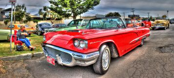 Red Ford Thunderbird Stock Photography